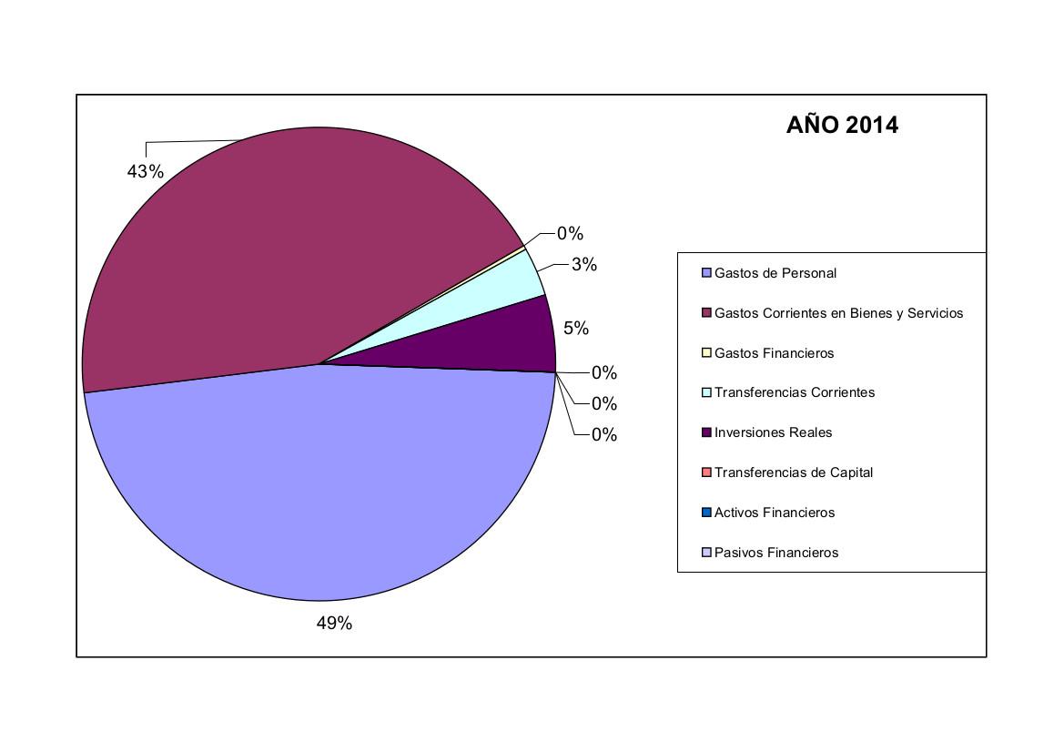 Gráfico gastos 2014