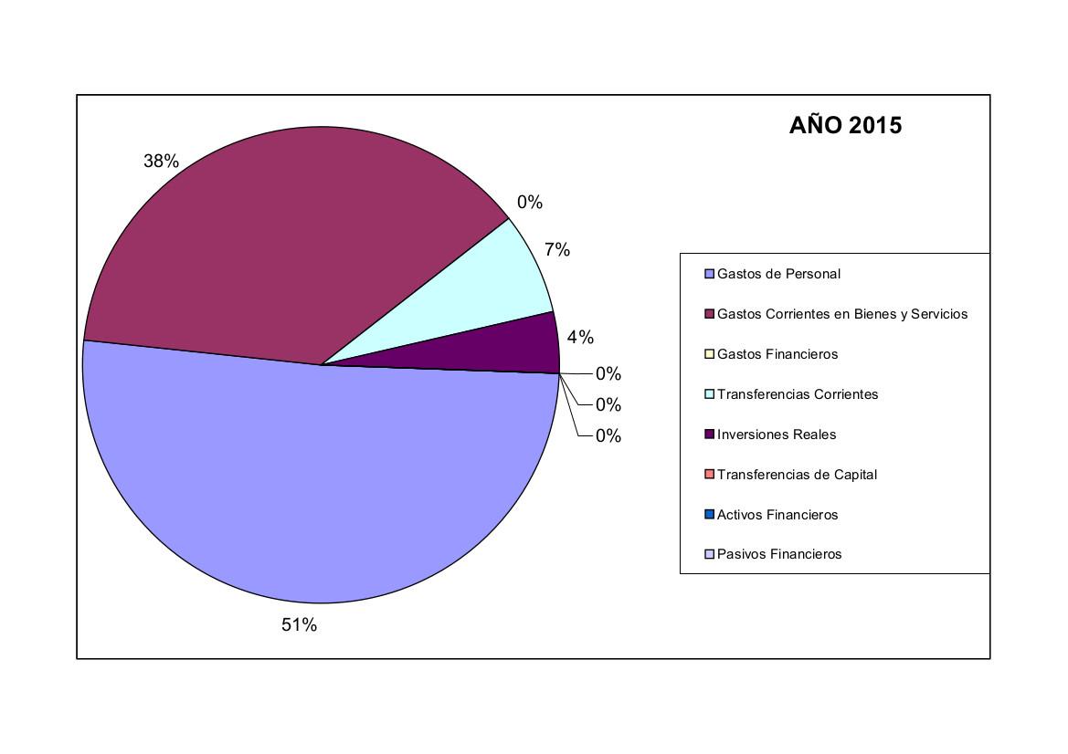 Gráfico gastos 2015