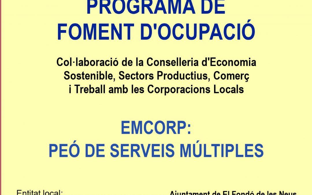 Programa EMCORP 2018