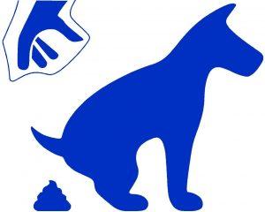 Imagen perro haciendo caca